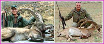 Wild Hunting Games In Mongolia