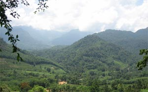 Hiking & Trekking In Sri Lanka
