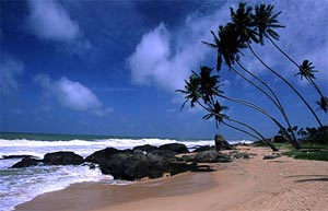 Adventure & Leisure Holiday in Sri Lanka