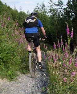 Cycling - Mountain Biking